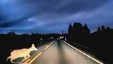 Clip: Hươu rừng sang đường bị ô tô đâm phải