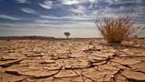 """Biến đổi khí hậu ảnh hưởng thế nào tới """"chuyện chăn gối""""?"""