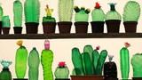 Không ai ngờ chai nhựa có thể biến thành những vật này