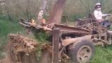 Mục sở thị máy nhổ gốc cây ở nước người ta