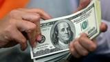 USD tăng kỷ lục: Đầu năm ôm vào, cuối năm thắng đậm