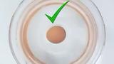 Các mẹo hay với trứng dành cho người nội trợ