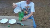 Bỏ túi mẹo làm bẫy muỗi đơn giản cực kỳ hiệu quả
