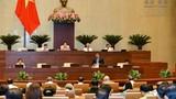 Hôm nay, Quốc hội xem xét việc bổ nhiệm 2 Thẩm phán TAND tối cao