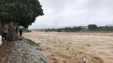 Thủ tướng: Đảm bảo an toàn hồ đập, không để dân vùng lũ chịu đói