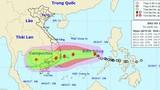 Bão số 12 tiếp tục mạnh lên, TP.HCM cấm tàu thuyền ra khơi