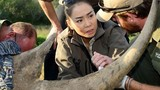 Thu Minh được chọn là ngôi sao truyền cảm hứng quốc tế