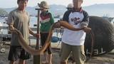 Tận mục nghề săn bắt thủy hải sản nguy hiểm ở Việt Nam