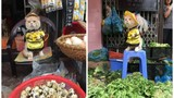 Gặp chú mèo ở Hải Phòng gây sốt mạng Thái Lan