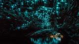 Đẹp tuyệt mỹ hang động đom đóm phát sáng kỳ ảo