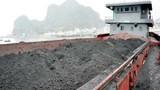 Thu giữ hàng nghìn tấn than buôn lậu qua đường biển