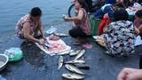 Xem lại hình ảnh chợ cá Hồ Tây tấp nập trước đây