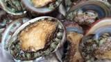 Bài thuốc chữa bệnh cực tốt từ bào ngư