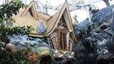 """Thăm """"Ngôi nhà điên"""" có kiến trúc kỳ quái ở Đà Lạt"""