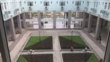 Ấn tượng không gian chữa bệnh xanh mướt tại Bệnh viện K3