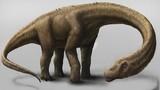 Những điều đáng kinh ngạc về 10 loài khủng long lớn nhất