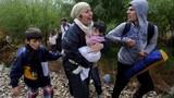 """Châu Âu """"bó tay"""" trước cuộc khủng hoảng tị nạn?"""