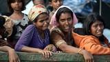 Khủng hoảng Rohingya và sự thống nhất trong ASEAN