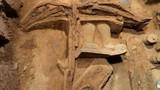 Sức mạnh kinh ngạc của siêu nỏ trong mộ Tần Thủy Hoàng