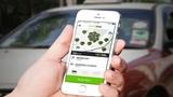 Grab, Uber tiết kiệm chi phí cho người dùng, sao lại hạn chế?