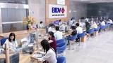 Soi lợi nhuận, nợ xấu ngân hàng BIDV năm 2016
