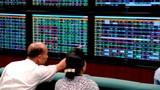 Hàng loạt cổ phiếu hot ồ ạt lên sàn