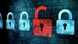 Hàng trăm website của Việt Nam bị hacker tấn công