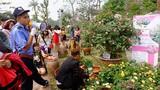 Ảnh: Sự thật phũ phàng ở Lễ hội hoa hồng Bulgari