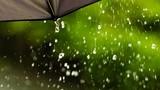 Thời tiết hôm nay 8/6: Cả nước có mưa rào