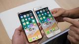 Việt Nam bắt đầu cho đặt hàng iPhone X chính hãng
