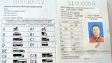 Ngày mai TP.HCM cấp giấy phép lái xe quốc tế