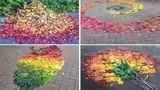 Giới trẻ Nhật Bản biến đám lá rơi thành thứ không tưởng