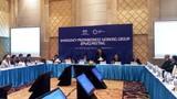 Khai mạc 7 cuộc họp đầu tiên của các nhóm công tác APEC