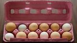 Khám phá loại trứng làm từ thực vật ngon nhất thế giới