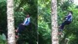 Xem cậu bé đi thẳng đứng trên cây dừa như có ma thuật