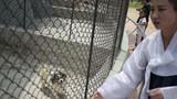 Bên trong vườn thú ở thủ đô Triều Tiên