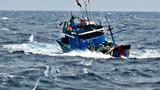 Tàu cá Bình Định bị cảnh sát biển Trung Quốc tấn công