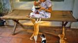 Ảnh độc về chó mèo ở Sài Gòn những năm 1989-1990