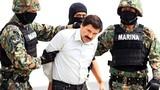 Trùm ma túy Mexico tung 10 triệu USD để tìm nơi ẩn nấp