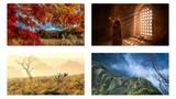 Ngắm loạt ảnh du lịch ấn tượng đăng trên Telegraph