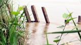 Thi thể phụ nữ chết lâu ngày nổi trên sông Hồng