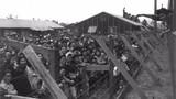 Nỗi khổ của những người Nhật sống ở Mỹ thời CTTG 2 (2)