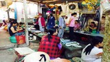 Rùng mình chợ cá độc chết người ở Thừa Thiên - Huế