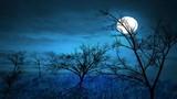 Hoa đã nở, trăng lại vừa tròn anh có còn nhớ lời nguyện ước