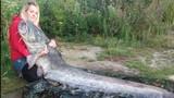 Những thủy quái khổng lồ sa lưới gây sốc nặng