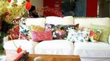 Gợi ý trang trí sofa bằng gối cho phòng khách quyến rũ