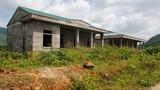 Dự án tái định cư cho dân vạn đò thành bãi chăn bò