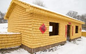 Kỳ quặc ngôi nhà được dựng từ hàng nghìn bắp ngô