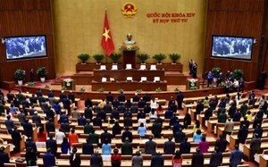Quốc hội thông qua cơ chế đặc thù cho TP.HCM