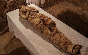 Loạt cổ vật cực giá trị trong mộ cổ 3.500 tuổi vừa được phát hiện